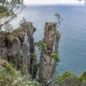 Fluted_Cape_Bruny Island